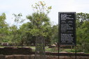 Anura - skylt
