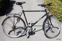 Gamla cykeln